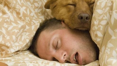 """成年人睡觉流口水是正常的吗?如果你有,就是这个器官""""虚""""了!"""
