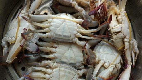 吃螃蟹不小心,可能会被截肢?并非谣言,处理生螃蟹时记得戴手套