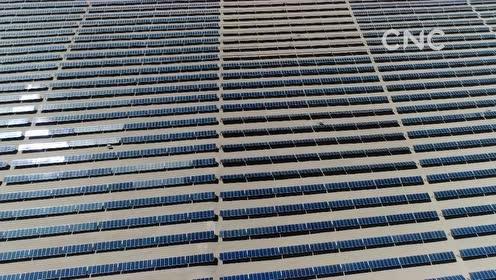 AI合成主播│中国企业承建阿根廷光伏发电 满足约30万个家庭用电需求