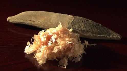 世界上最坚硬的鱼,咬上去能把牙齿硌掉,还有人做成刀切菜!