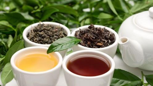 肝病最怕的1种茶饮,每天坚持喝一杯,清除一年的肝病毒素