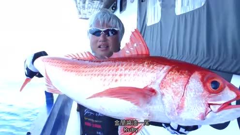海钓遇上疯狂鱼情,钓鱼人下竿就中鱼,钓上来的鱼体大膘肥!
