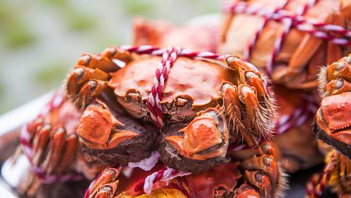 秋季吃蟹,这四个部位绝对不能吃