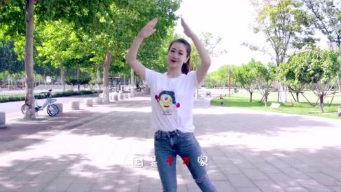庆祝新中国70周年!天天练舞功:幼儿手语舞蹈《国家》