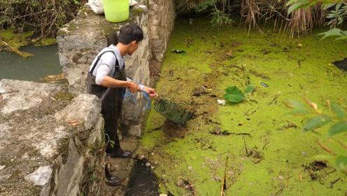 小明在河道闸口处放地笼,收笼时乐坏了,看他究竟捕到了什么野味
