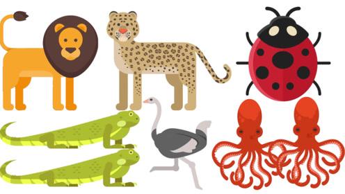 快乐英语记单词猎豹是世界上跑的最快的动物吗英语单词学习