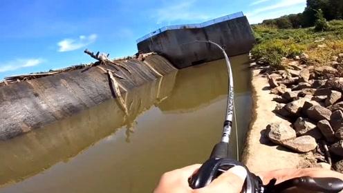 同一个点换个方向,情侣鲈先后被德州的组擒获!注意饵控制在哪个水层!