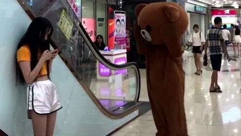 网红熊太天真了,竟然还想在商场里撩妹子,这下被人虐了吧