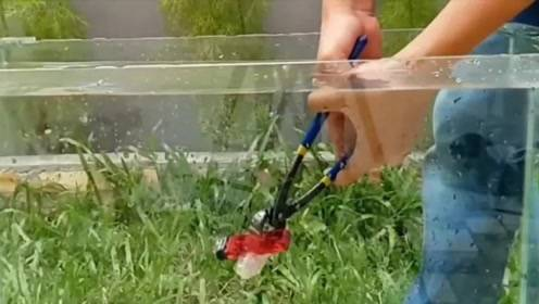 老外将打火机放进水里,夹破后,场面无法控制