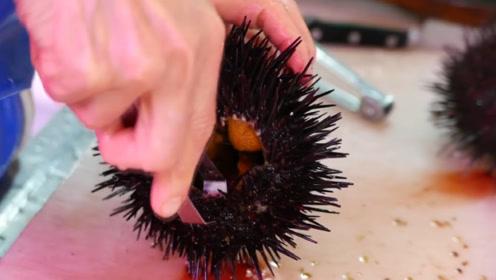 全球可以生吃的4种海鲜,如果全吃过,绝对称得上土豪!