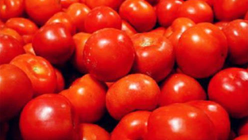 西红柿别让冰箱冷藏,一个土方法,放多久都不坏,实用方便
