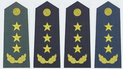 解放军永不退役的三类军人,其中一类全军仅有百人,比将军还稀缺