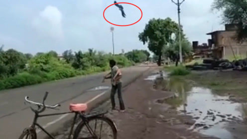 """印度男子救小乌鸦,反被乌鸦当仇人,被鸦群""""追杀""""三年苦不堪言"""