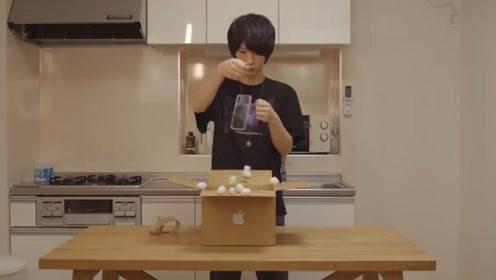 小伙卖肾买iPhone11,却只收到透明手机壳?这损友也太损了