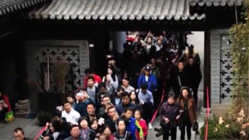 1400年前李世民栽下一棵树,如今千万游客排队,只为欣赏一眼
