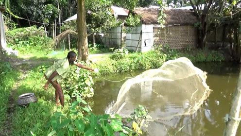 田边的水塘,干完农活甩上一网……