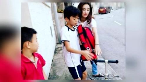 张柏芝带两儿子旅游,画风完全变样,却荣获全民力赞