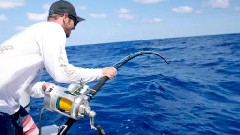 鱼竿突然晃动,小伙用力拉杆,拉上来才知道有多大