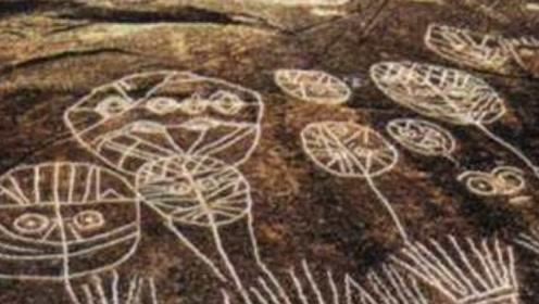 """江苏找到""""神秘的天书"""",距今已有7000年,专家都不知道它的来历"""