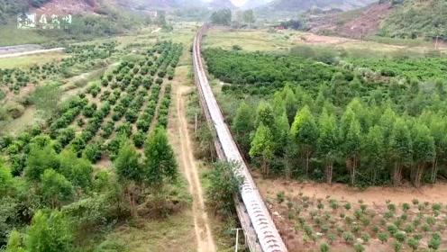 广西山里发现奇怪建筑,还以为是火车铁路,靠近后发现没这么简单