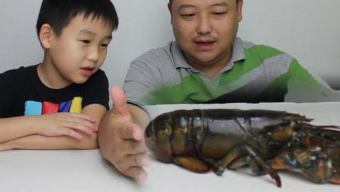 试吃生猛大龙虾 处理过程太惊心 孩子被爸爸坑惨了 差点进医院