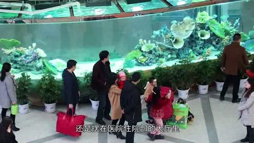 """医院大厅摆14米的""""豪华""""鱼缸,造价数万元,供病人""""免费""""观赏"""