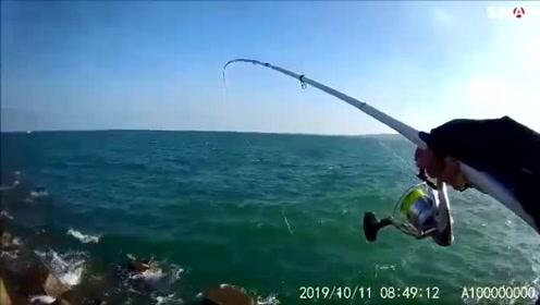 南寮矶钓,两个多小时拉到手酸,海钓狂拉渔情累并快乐着