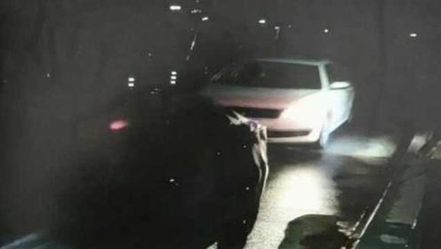 男子为省250元过路费,风骚走位紧贴前车冲卡,结果被罚3倍