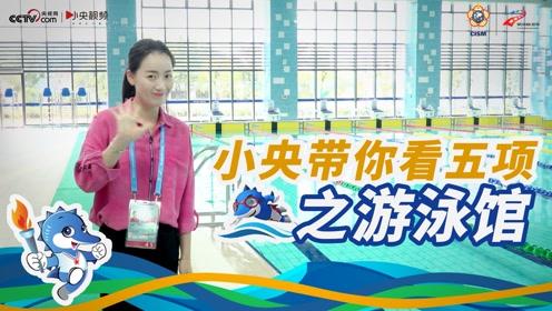 全吸声体天花板、双重水质检测...记者探班游泳馆