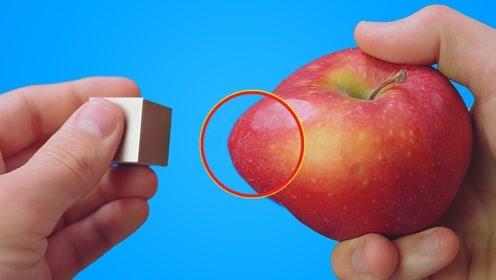 """把""""磁铁之王""""放在苹果面前,下一秒变化震撼,镜头拍下全过程"""
