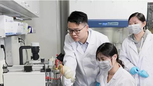 重大发现!华师大科学家解锁绿茶新功能,智能化细胞让喝茶代替打针