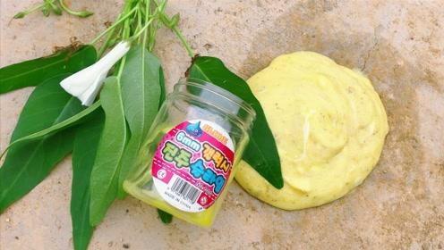 试过在菜园里玩起泡胶吗?放了太久还没起泡吗?一共有多少种蔬菜