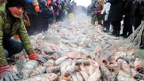 查干湖的鱼越捞越多?渔民无奈投诉,都是他们搞的鬼