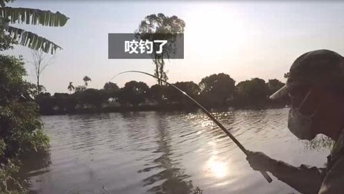 农村小河边用手竿钓鱼只要钓口好,这起钓就是快拉动瞬间就收一条
