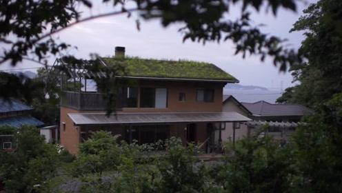 用土盖房并把草种上屋顶,这设计很绿色
