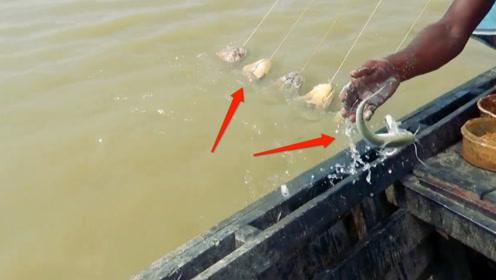 钓鱼:挂了几袋诱饵,引来了很多鱼,直接用手就能把鱼捞上来