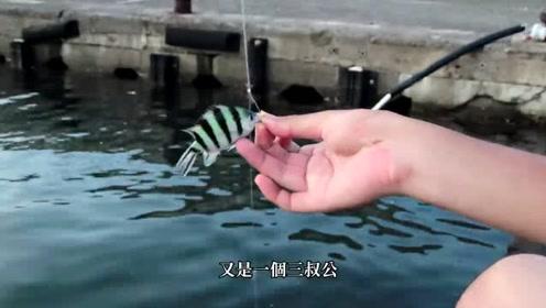 海钓,吃剩的粽子也能钓到这么多鱼,这资源真羡慕