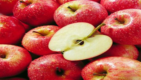 苹果挑选有诀窍,一挑一个甜,再也不会挑到不好吃的苹果了特别棒