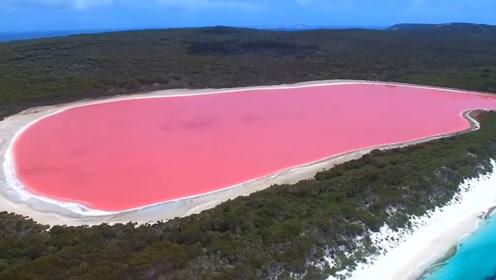 世界上独特的海洋:一半岩浆一半海水,经常呈现血红色