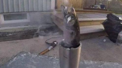 老外为吃鱼别出心裁,将滚烫铝水倒进活鱼嘴里,下一幕太残忍