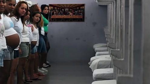 这个监狱全是女犯人,每年有不少人有孕,为什么会费尽心机怀孕?