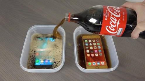 三星手机和苹果手机,同时泡进可乐里,谁能坚持的时间更长