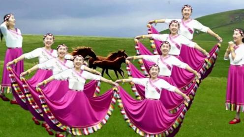 罗平兰草广场舞《敖包上的月亮》藏族舞教学,适合初学
