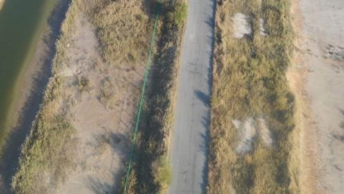 无人机航拍黄河三角洲,广袤的湿地上有一条笔直的公路