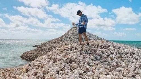 """不可思议的""""海螺岛"""",是吃货们制造出来的,网友:团结就是力量"""