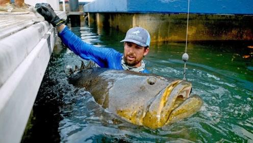 这么大的石斑鱼,还是第一次见,网友:最后拼的还是装备