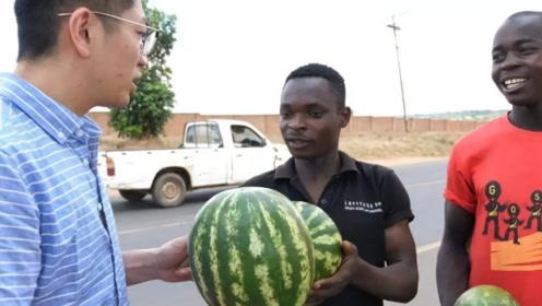 """为什么请美国黑人吃西瓜,马上就会被""""爆揍""""?看完涨知识了!"""