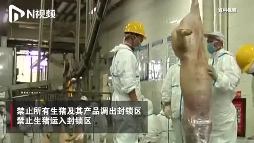 农业农村部:云南腾冲发生非洲猪瘟,发病177头,死亡97头