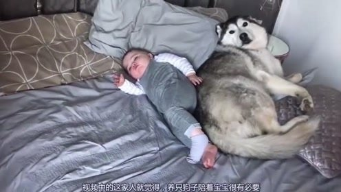 宝宝和狗子都赖床不起,都这么可爱,铲屎官都不知道该不该叫醒他们了