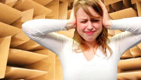 世界上最安静的房间,普通人进去体验一分钟,瞬间崩溃了!